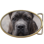 Cane Corso Dog Belt Buckle. Code A0080