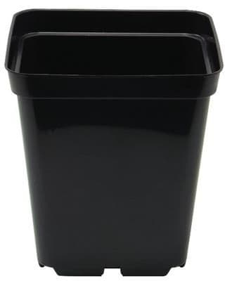 0.7 litre black square plant pot