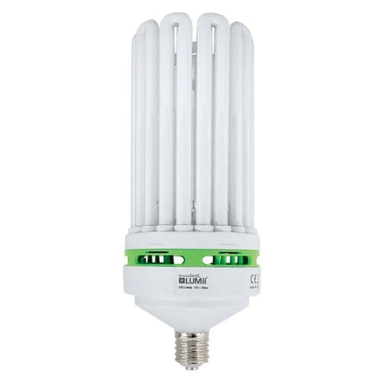CFL Lamps